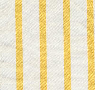 Cricket Club Stripe