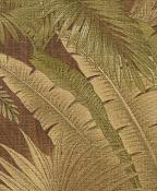 TBO Bahamian Breeze