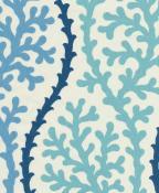 Coral Splendor