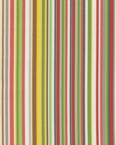 Stripe Scene